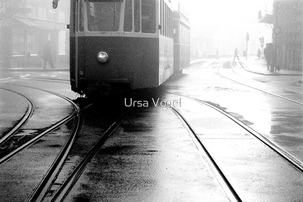 1986 - misty morning by Ursa Vogel