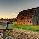 Old Timer by Dale Lockwood