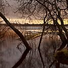 Light On The Loch by Brian Kerr