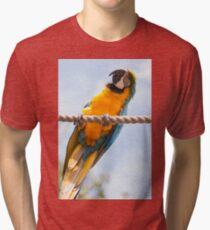 Blink Of Colour Tri-blend T-Shirt