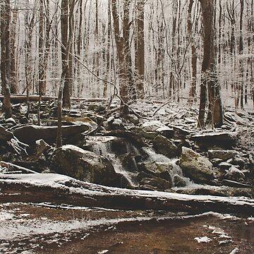 Ice Cold Stream de AmberRoques