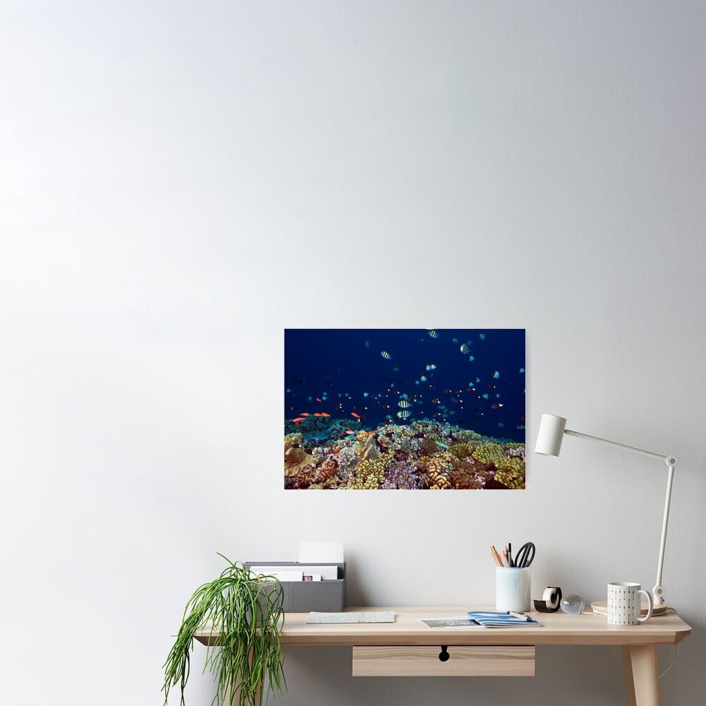 Reef edge Poster