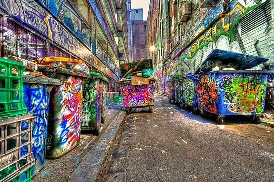 Hoiser Lane by Danielle  Miner