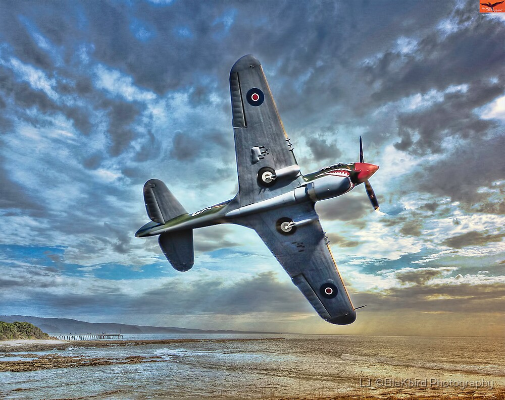 Birds eye view. ( P-40_Warhawk Flying Tiger) by LJ_©BlaKbird Photography