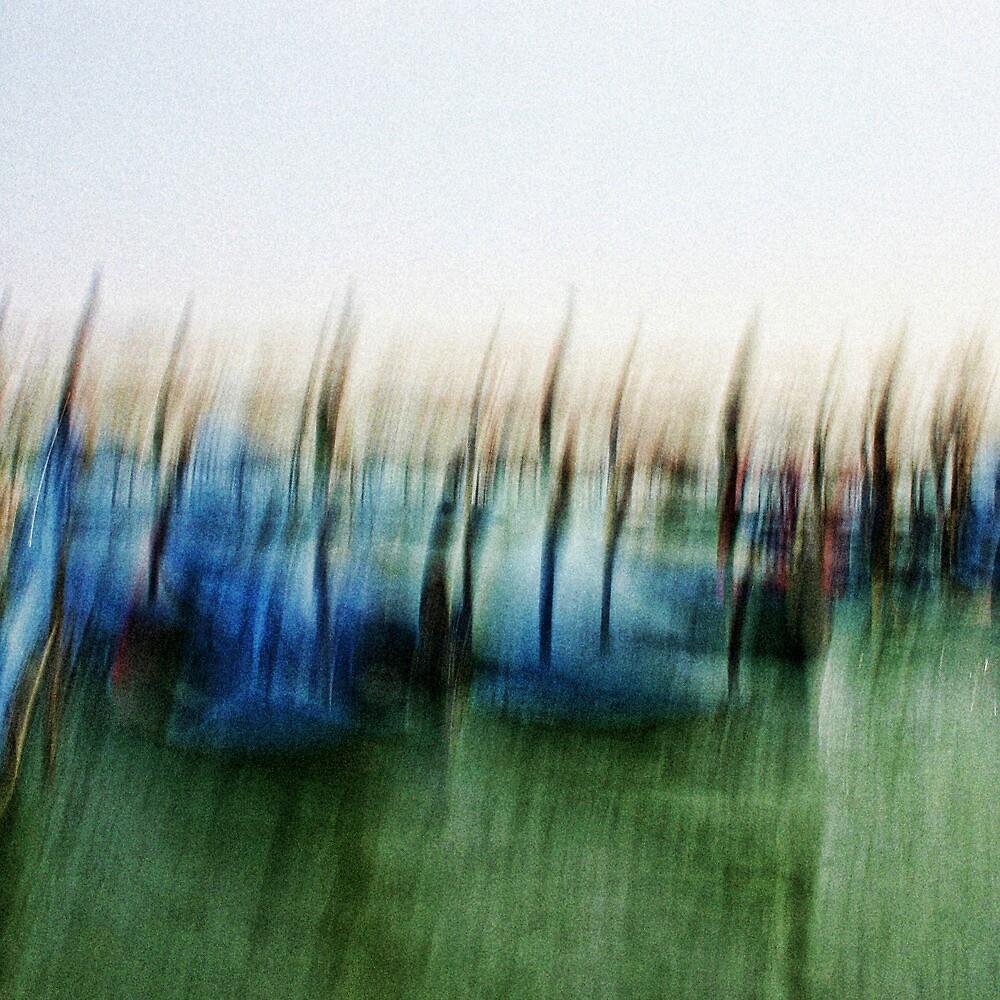 Gondole a Venezia by Jenifer Wallis