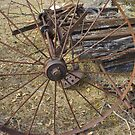 Rusty Hay Raker by Laurie Perry