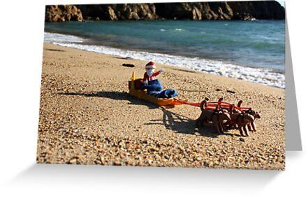 Ho, ho, ho! by garigots