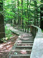 Kortright Centre by Jeanette Muhr
