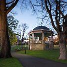 Early Morning in St Davids Park, Hobart, Tasmania #5 by Chris Cobern