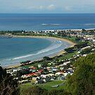 Overlooking Apollo Bay Victoria Australia by Alison Murphy