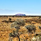 ''Uluru'' From a distance. by bowenite