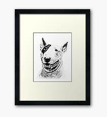 Comical Bull Terrier Framed Print
