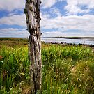 North Uist by David Robinson