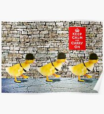 Army of Cute Ducklings Poster