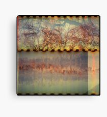 the fall and the fire Canvas Print