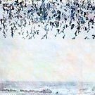 LBI: At the Beach by Mary Ann Reilly