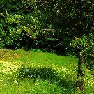 greeny  by Kristina R.