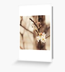 and then there was you. Greeting Card