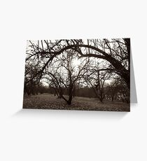 Graceful Arch Greeting Card
