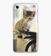 Playing Kitten iPhone Case/Skin