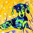 blue dachshund by jashumbert