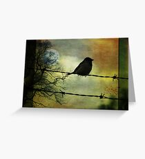 Bird on a wire Greeting Card