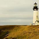 Gem Of The Central Oregon Coast by Nick Boren
