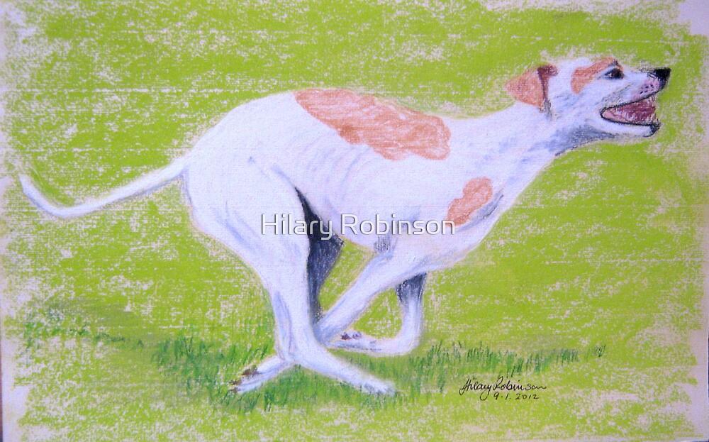 Greyhound running by Hilary Robinson