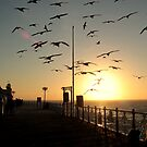 Sunset at Brighton Pier by rsangsterkelly