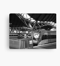 Southerncross Canvas Print
