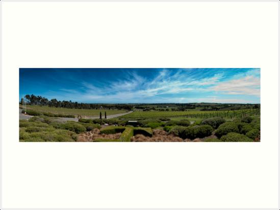 Tapestry Wines, McLaren Vale, South Australia