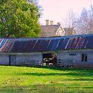 Old shed, Mole Creek, Tasmania by wearehouse