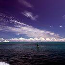 Cruise Ships moored at Dockyard, Bermuda by John Gaffen