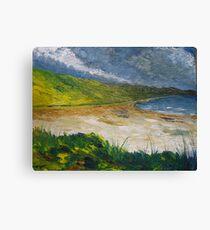 Coastal road to Barleycove Canvas Print