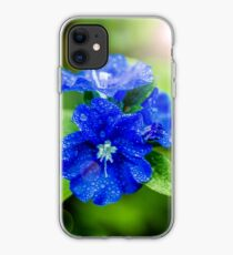 Evolvulus Blue Eyes iPhone Case