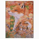 Foxes by Graeme  Stevenson
