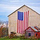 Patriotic Barn by Marcia Rubin