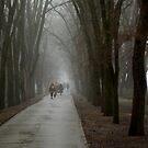 mist in the alleys by Nikolay Semyonov