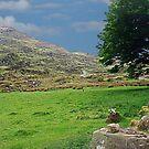Farmland, Ireland by JoeTravers