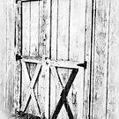 Old Barn Doors by Marcia Rubin