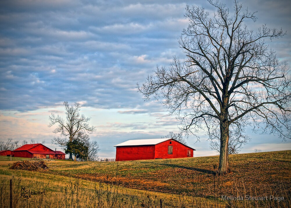 """""""Red Barns Against a Cold Winter Sky"""" by Melinda Stewart Page"""