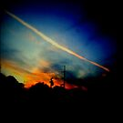 Chasing the last light by Anne  McGinn