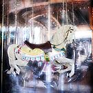 Carousel by Cathie Tranent