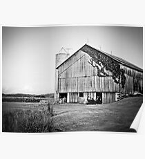 Rural Barn  Poster