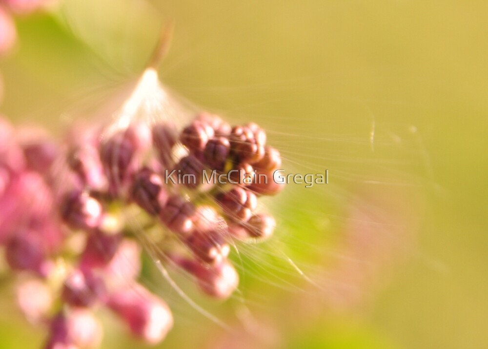Seed Caught in Lilac by Kim McClain Gregal