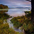 Misty Loch @ Sunrise by Doug Dawson
