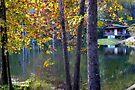 Fly Shop In Autumn by Carolyn  Fletcher