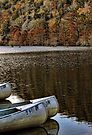 Fall Canoeing At Beavers Bend by Carolyn  Fletcher