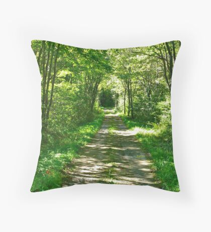 Into the Black Hole Throw Pillow
