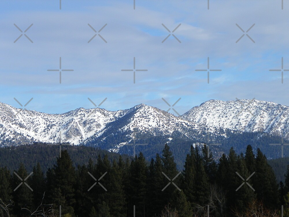 Elkhorn Mountains by Betty  Town Duncan
